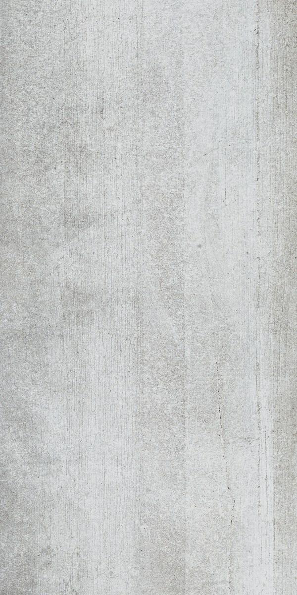 尼斯木化石